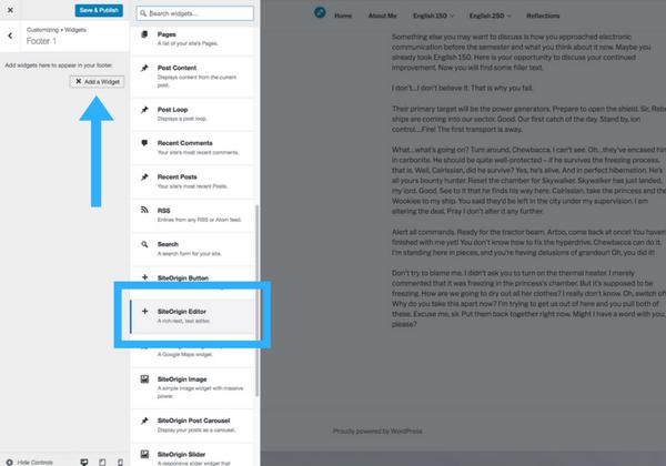 The customize panel screenshot step 7b choosing the text editor widget