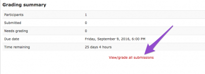 clickable grading rubric screenshot 2